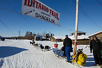 at the Shageluk village checkpoint during the 2011 Iditarod race.