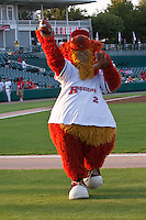 September 9th,2010 Rough Riders mascott in action during the MiLB Texas League playoff game between the Midland Rockhouds and the Frisco Rough Riders at Dr. Pepper field in Frisco Tx.
