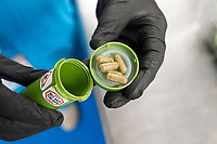 "A worker displays high-does ""g-cap"" gel capsules of cannabis contained in dram bottles in the packaging department at the production and packaging facility for Garden Remedies, a medical cannabis producer, in Fitchburg, Massachusetts, USA, on Fri., Feb. 22, 2019.  The bottles have a variety of safety labels, including stickers that read ""Not safe for children"" and ""Contains THC"" in addition to other safety features."