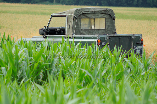 Germany 2005. Green 1962 Land Rover 88 SWB, registration 6459UR. --- Releases available. Automotive trademarks are the property of the trademark holder, authorization may be needed for some uses.