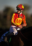 ARCADIA, CA - FEBRUARY 06: Jockey, Flavian Prat smiles after winning the San Antonio Stakes with Hoppertunity #5 at Santa Anita Park on February 06, 2016 in Arcadia, California. (Photo by Alex Evers/Eclipse Sportswire/Getty Images)