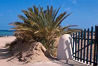 an der Westküste, Djerba, Tunesien