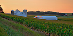 Beautiful farm in Lanesboro, MN area at sunrise.