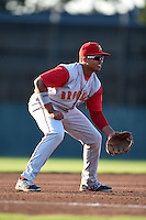 Brooklyn Cyclones third baseman Jhoan Urena (13) during a game against the Batavia Muckdogs on August 9, 2014 at Dwyer Stadium in Batavia, New York.  Batavia defeated Brooklyn 4-2.  (Mike Janes/Four Seam Images)