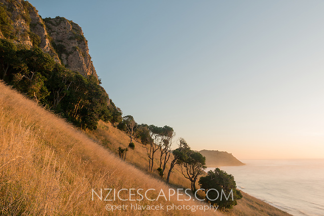 Coastal views at sunrise near Kairakau Beach settlement, Hawke's Bay, East Coast, North Island, New Zealand, NZ