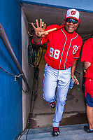28 February 2017: Washington Nationals bullpen catcher Nilson Robledo steps up from the tunnel and into the dugout prior to the inaugural Spring Training game between the Washington Nationals and the Houston Astros at the Ballpark of the Palm Beaches in West Palm Beach, Florida. The Nationals defeated the Astros 4-3 in Grapefruit League play. Mandatory Credit: Ed Wolfstein Photo *** RAW (NEF) Image File Available ***