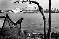 Australia. Province of New South Wales. Sydney. The Sydney Opera House and Harbour Bridge seen from Mrs Macquarie's Point. A lonely man walks by the Pacific Ocean seaside. The Sydney Opera House is situated on Bennelong Point in Sydney Harbour. The opera with its spherical-sectioned shells was built by the architect Jorn Utzon. The roofs of the House are constructed of 1,056,000 glazed white granite tiles. The Sydney Harbour Bridge is the tallest steel arch bridge in the world, spanning the width of Sydney Harbour. Trains, cars, bicycles, and pedestrians sweep across the bridge everyday, getting from one part of Sydney City to another. © 1999 Didier Ruef