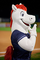 Binghamton Rumble Ponies mascot Rowdy the Pony during a game against the Portland Sea Dogs on August 31, 2018 at NYSEG Stadium in Binghamton, New York.  Portland defeated Binghamton 4-1.  (Mike Janes/Four Seam Images)