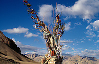 Gebetsfahnen in Ladakh (Jammu+Kashmir), Indien.