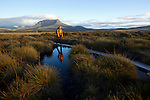 Typical Overland track landscape with walkers on duck boards to protect the humid ecosystem of button grass....paysage typique de l'overland track avec des passerelles (duck board) pour portéger les zones humides button grass (gymnoschoenus sphaerocephalus)