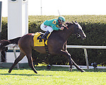 Ball Dancing and jockey Javier Castellano win the Jenny Wiley at Keeneland for owners W.S. Farish and F. Steve Mooney and trainer Chad Brown.