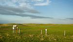 The TransCanada mainline runs through the beautiful hills of Saskatchewan near Chaplin. (Credit: Robert van Waarden - http://alongthepipeline.com)