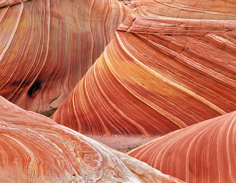 Close up of The Wave. Vermillion-Cliffs Wilderness, Arizona/Utah