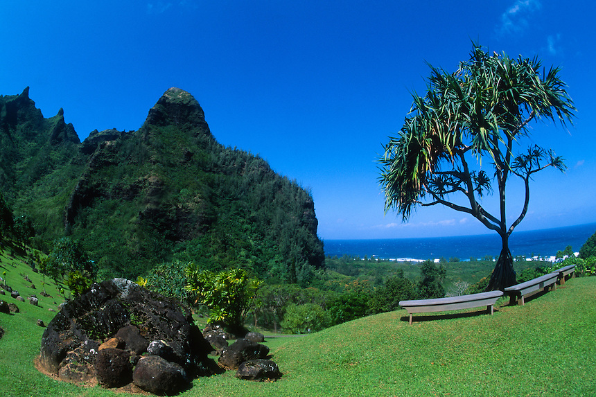 Rest Stop Along the Awa'awapui Trail, Kauai, Hawaii, US