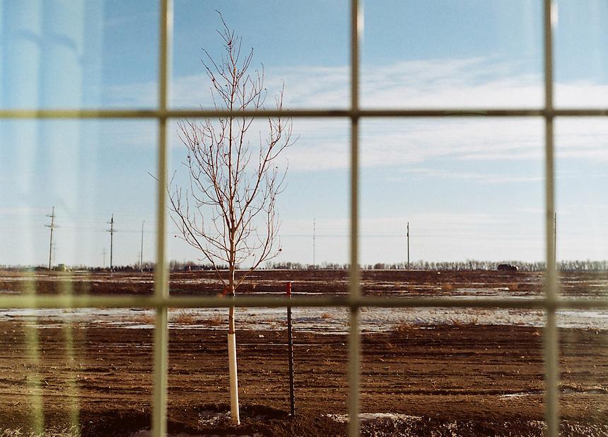 View from room in La Quinta hotel, Minot, North Dakota, 2014. MARK TAYLOR GALLERY