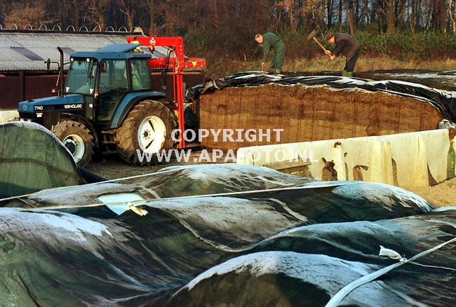 Arnhem,23-11-98  Foto:Koos Groenewold<br />Vader en zoon van Veelen hebben relatief weinig last van de vorst.Alleen het kuilvoer is moelijk los te krijgen.Met een hamer wordt het ijs weggeslagen.
