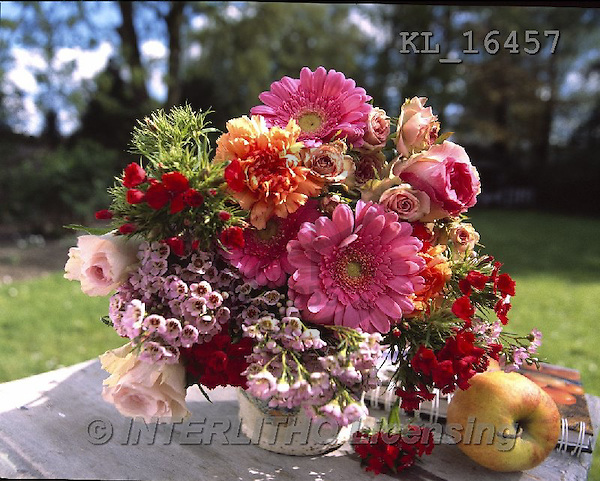 Interlitho, FLOWERS, BLUMEN, FLORES, photos+++++,flowers, red, pot,KL16457,#F#