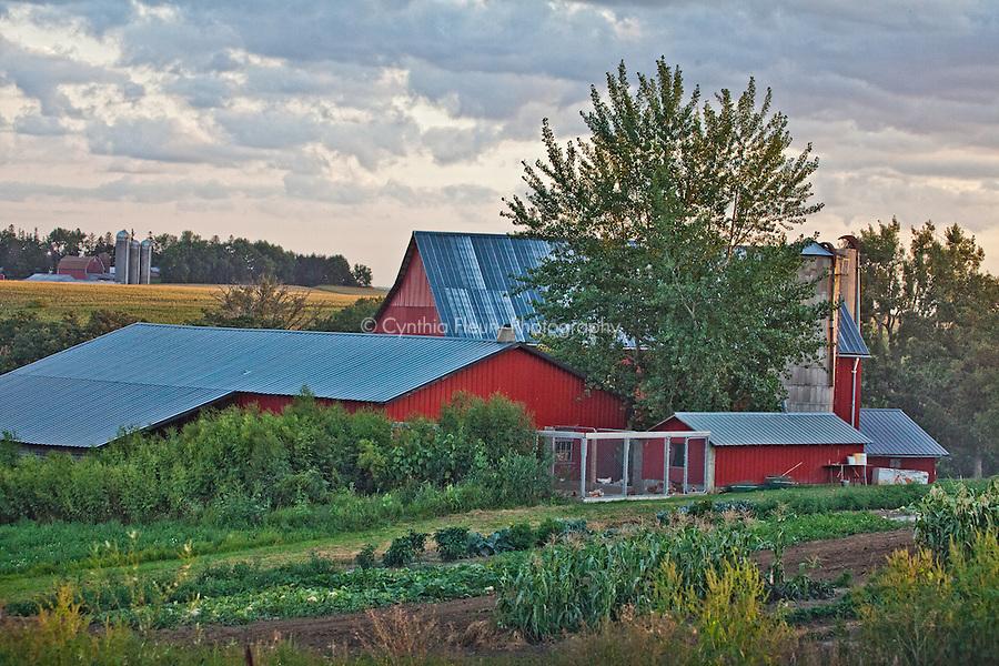 Amish farm Lanesboro, Harmony MN area