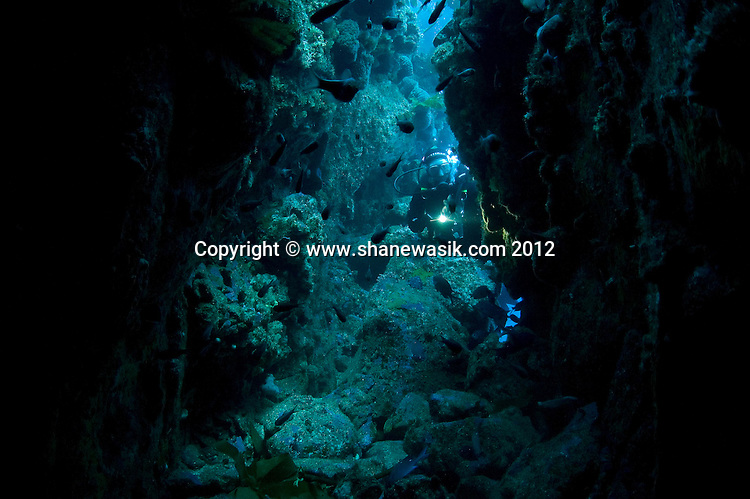 Pounded by storms, Astrolabe Reef has cracks, caves and cuts which can be explored by divers. This image was taken prior to the MV Rena wrecking on Astrolabe Reef in 2011.