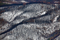 The Mendocino Complex wildfire burned an extensive portion of the forest in the Snow Mountain Wilderness, Lake County, California
