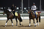 March 25, 2021: Scenes from Breakfast With The Stars morning at Meydan Racecourse, Dubai, UAE.<br /> Shamela Hanley/Eclipse Sportswire/CSM