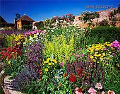 Tom Mackie, FLOWERS, photos, Walled garden, Packwood House, Lapworth, Warwickshire, England, GBTM892327-2,#F# Garten, jardín