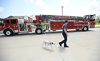 Martin Striefler, a firefighter with the Fayetteville Fire Department, and his dog, Ember, walk Tuesday, July 27, 2021, around Ladder 6 while training on the department's new tiller truck off Hollywood Avenue. The department bought its first tiller truck for $1.4 million using money from its share of city sales tax revenue. Early voting starts Tuesday, and Election Day is Aug. 10, to continue the 1-cent tax for operations and some capital expenditures. Visit nwaonline.com/210728Daily/ for today's photo gallery.<br />(NWA Democrat-Gazette/Andy Shupe)