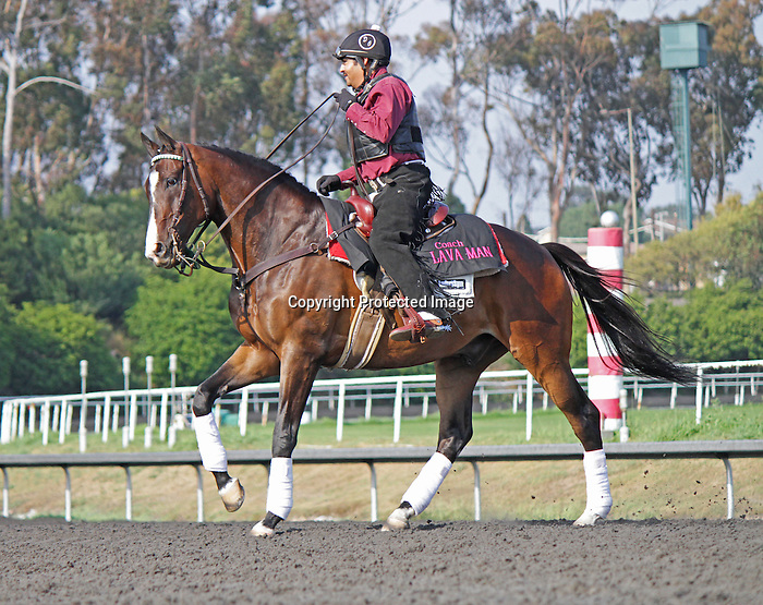 3 time winner of the G1 Hollywood Gold Cup, Lava Man, leads the post parade of the last Hollywood Gold Cup at Betfair Hollywood Park in Inglewood, CA on July 6, 2013. (Courtney Hanson/Eclipse Sportswire)