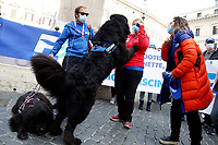 Water rescue dogs during the demonstration of swimming pools owners, workers and athletes, organized by the Italian Swimming Federation (FIN), against the closure of the swimming centers due to the Covid-19 pandemic.<br /> Rome (Italy), November 4th 2020<br /> Photo Samantha Zucchi Insidefoto