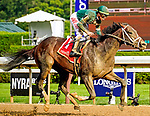 ZHORSERACING, thoroughbred, racing, horse, Saratoga Race Course, Sanford Stakes, two-year-olds, Wit, Irad Ortiz Jr., Todd Pletcher