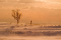 Arctic temperatures combine with gale force winds to create this surreal windblown scene at Colt State Park, Bristol RI.