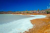 Salt lake Salina Slagbaai, Netherland Antilles, Caribbean, Atlantic, Bonaire, Washington Slagbaai National Park, Salina Slagbaai