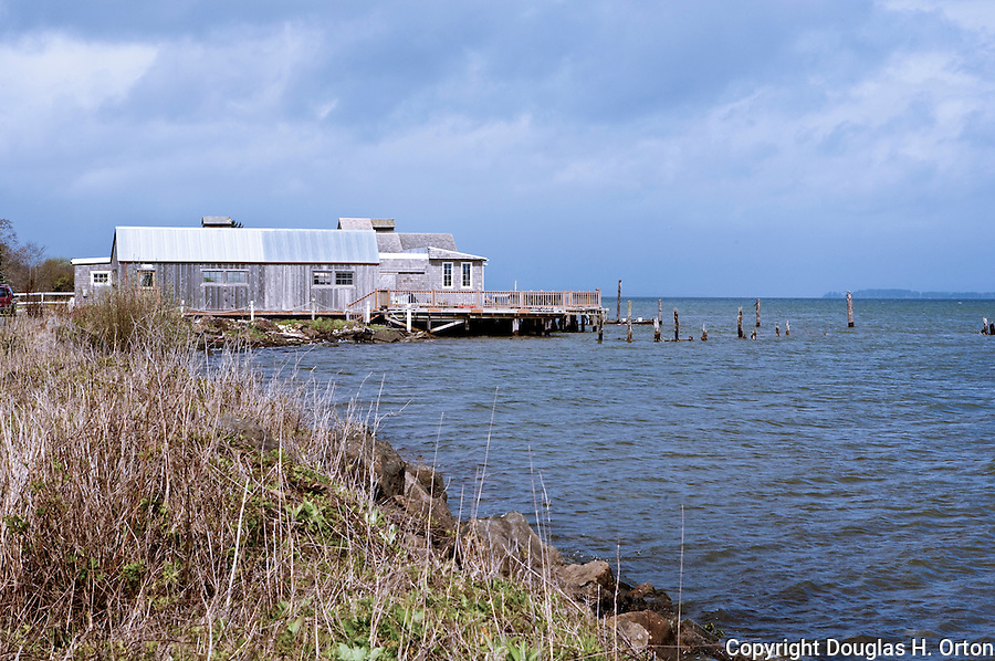 Historic Oysterville, on the Long Beach Penninsula shores of Willapa Bay, Washington represents the original industry of what was once considered the best harbor in the U.S. Olympic Peninsula