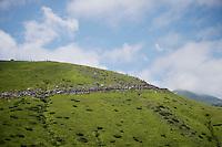 Biggest climb of the day: Port de Balès (HC/1755m/11.7km/7.7%)<br /> <br /> <br /> 2014 Tour de France<br /> stage 16: Carcassonne - Bagnères-de-Luchon (237km)