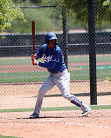 Frank Sanchez - Los Angeles Dodgers 2019 extended spring training (Bill Mitchell)