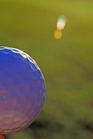 Close up of a golf ball on the green