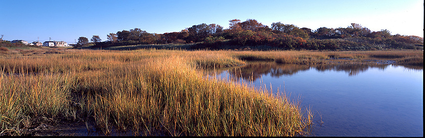 An autumn day beside the salt marsh in Seabrook, New Hampshire. Photograph by Peter E, Randall
