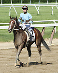 Tiz Miz Sue with Joe Rocco Jr. win the Grade I Acorn Stakes for fillies 3-year olds, going 1 mile, at Belmont Park.  Trainer Steve Hobby  Owners Cresran LLC