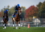 October 31, 2018 : Line of Duty (IRE), trained by Charlie Appleby, exercises in preparation for the Breeders' Cup Juvenile Turf at Churchill Downs on October 31, 2018 in Louisville, Kentucky. Evers/ESW/Breeders Cup