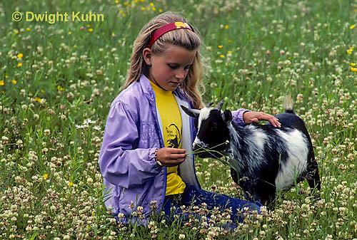 SH05-001z  Goat - girl feeding kid in meadow