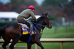 October 30, 2020: Ollie'S Candy, trained by trainer John W. Sadler, exercises in preparation for the Breeders' Cup Distaff at Keeneland Racetrack in Lexington, Kentucky on October 30, 2020. Alex Evers/Eclipse Sportswire/Breeders Cup