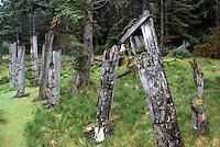 Historic Haida Mortuary Totem Poles at Ninstints (UNESCO World Heritage Site) on Anthony Island (Skung Gwaii), Gwaii Haanas National Park Reserve and Haida Heritage Site, Haida Gwaii (Queen Charlotte Islands), Northern BC, British Columbia, Canada