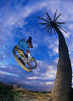 Martin Hawyes .Spain .pic copyright Steve Behr / Stockfile