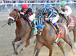Private Zone (no. 7), ridden by Martin Pedroza and trained by Alfredo Velazquez, wins the 75th running of the grade 1 Vosburgh Invitational Stakes for fillies and mares three years old and upward on September 27, 2014 at Belmont Park in Elmont, New York.  (Bob Mayberger/Eclipse Sportswire)
