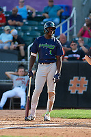Vermont Lake Monsters Lawrence Butler (1) bats during a NY-Penn League game against the Aberdeen IronBirds on August 18, 2019 at Leidos Field at Ripken Stadium in Aberdeen, Maryland.  Vermont defeated Aberdeen 6-5.  (Mike Janes/Four Seam Images)