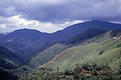 Minas Gerais, Brazil. Atlantic rainforest in the Serra de Mantiqueira hills.
