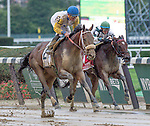 ELMONT, NY - OCTOBER 01: Forever Unbridled #2, ridden by Joel Rosario, wins the Beldame Stakes on Turf Classic Day at Belmont Park on October 1, 2016 in Elmont, New York. (Photo by Dan Heary/Eclipse Sportswire/Getty Images)