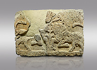 Hittite relief sculpted orthostat stone panel of Herald's Wall Limestone, Karkamıs, (Kargamıs), Carchemish (Karkemish), 900-700 B.C. Anatolian Civilisations Museum, Ankara, Turkey.<br /> <br /> A pair of kneeling bull on either side of the tree of life, one each foot is on the tree, the other feet are bend towards the abdomen.