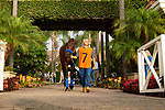 DEL MAR,CA-SEPTEMBER 03: Game Winner enters the Del Mar Futurity at Del Mar Race Track on September 3,2018 in Del Mar,California (Photo by Kaz Ishida/Eclipse Sportswire/Getty Images)