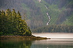 Bald eagle and waterfall, Glacier Bay National Park and Preserve, Alaska<br /> <br /> Image licensing: https://www.gettyimages.com/license/163243362